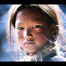 Tibet lemalet ultreia sagesse
